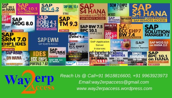 Online Sever Access: SAP Remote IDES, Non-IDES Online Server Access