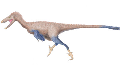 Troodon | facts | size