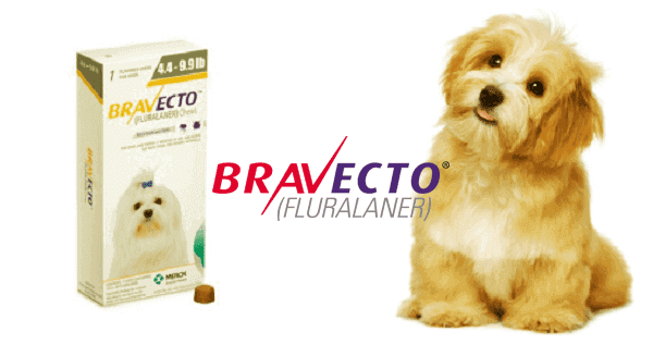 bravecto for dogs reviews amazon rebate puppies price  how does work petsmart chewy Animal safe, pathologies, drugs,  civilservice, data base.