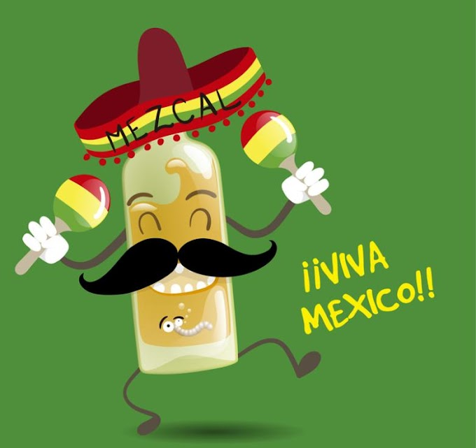 Cartoon Mexico Tequila Free Vector