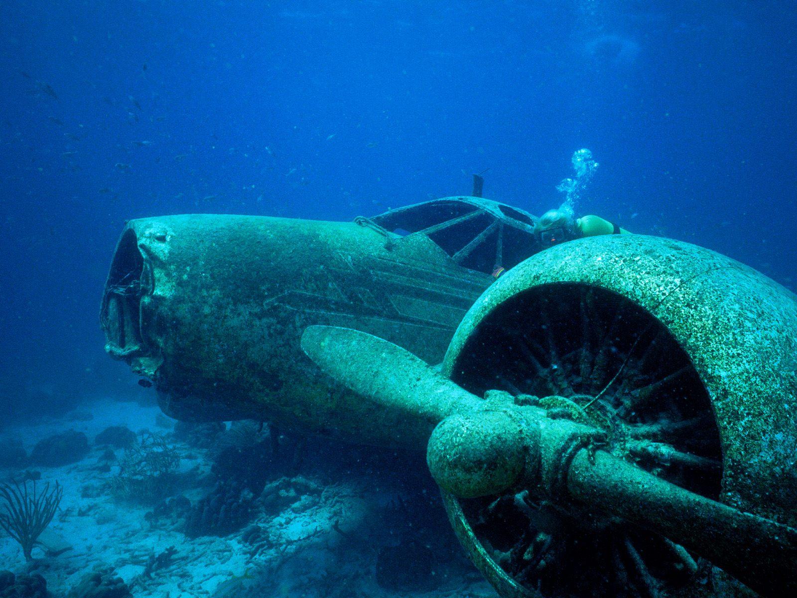 My Background Blog: underwater