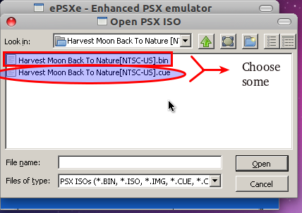 HMBTN] Harvest Moon Back To Nature + Cheats - INFORMATION