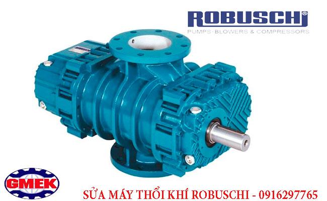 Sửa máy thổi khhis Robuschi, bảo dưỡng Máy thổi khí Robuschi