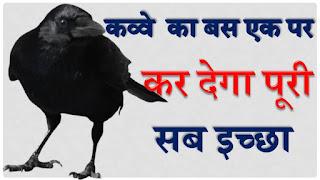 ख़ुद देखें काक तंत्र  तुरंत कार्य सिद्धि करवाने वाला उपाय - Fulfil Your Wish With A Crow Feather