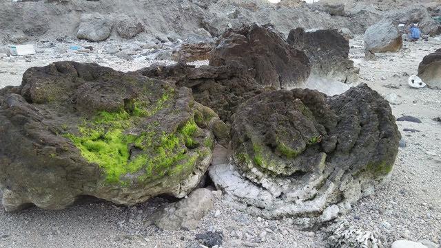 Việc phát hiện nghĩa địa san hô cổ có ý nghĩa đặc biệt quan trọng về mặt khoa học, bổ sung những bằng chứng và luận cứ cần thiết cho việc đề nghị UNESCO công nhận công viên địa chất toàn cầu đối với Lý Sơn vùng lân cận
