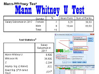 How to Mann Whitney U Test in SPSS Completed Successfully