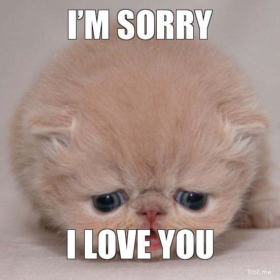 Im Sorry And I Love You Quotes
