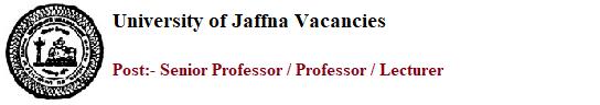 Senior Professor / Professor / Lecturer