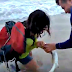Woman Gets Bitten After She Tries To Take A Selfie With A Shark... Watch!
