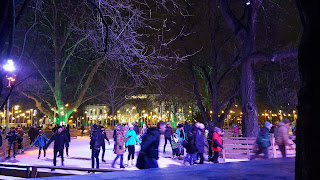 Evening ice skating in Vienna
