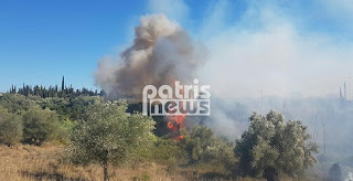 Ζαχάρω: Σε εξέλιξη μεγάλη πυρκαγιά σε δασική έκταση στην Αρήνη
