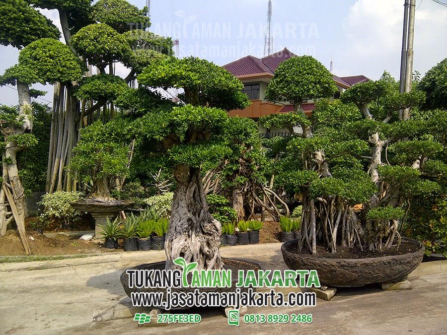 Jasa Taman Jakarta Telp 0813 8929 2486, Pin BB 275FE3ED