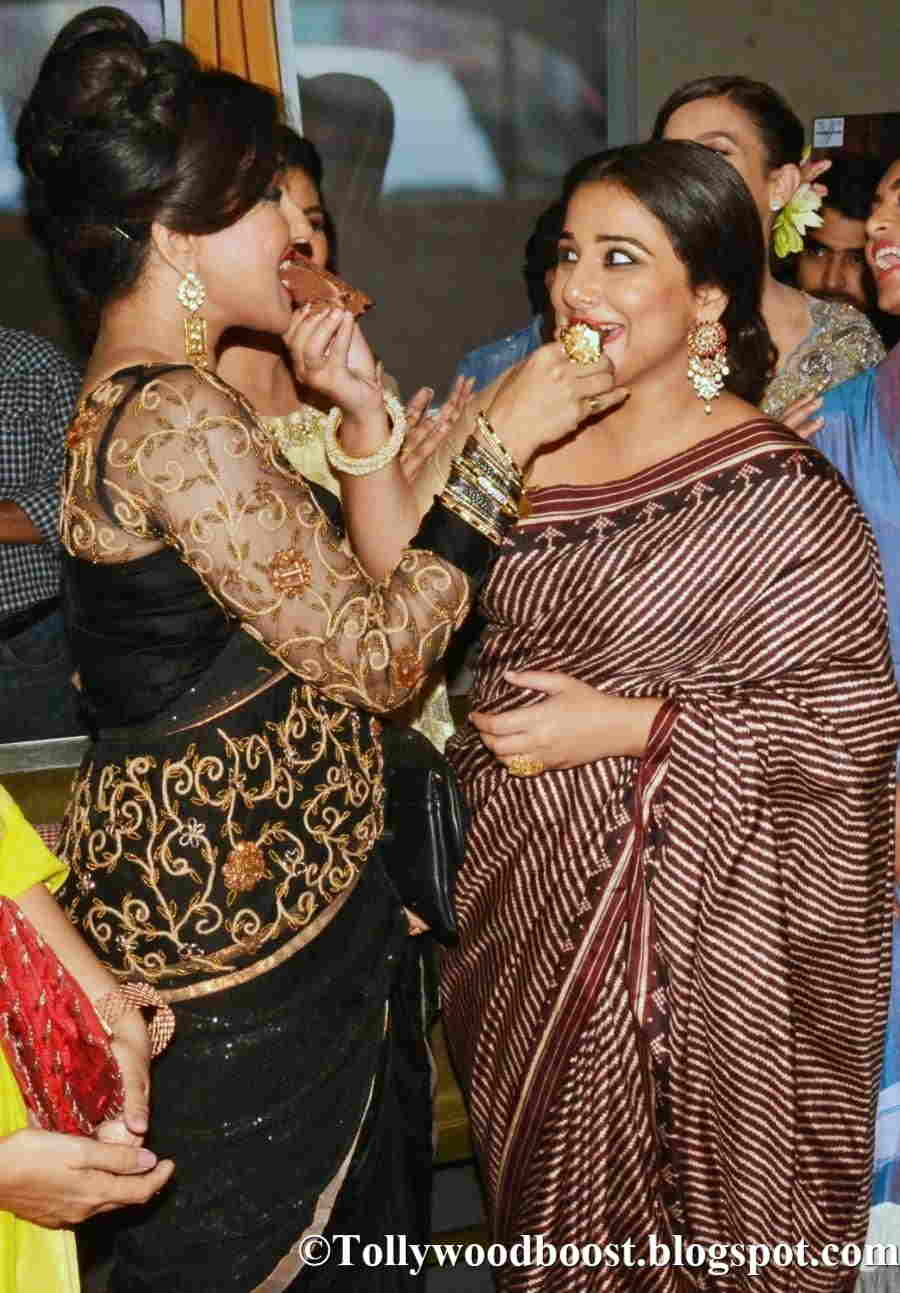Beautiful Hindi Girl Vidya Balan Long Hair Photos In Maroon Saree
