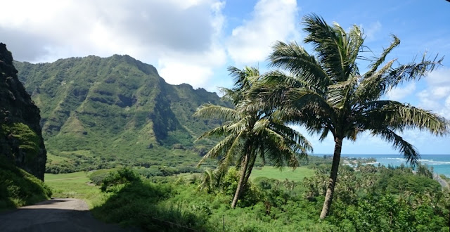 Hawaii - auf Oahu