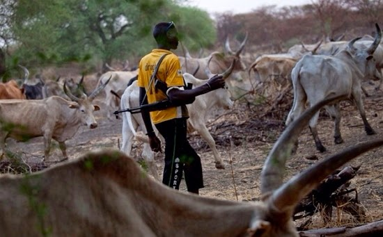 fulani kill woman ogun state