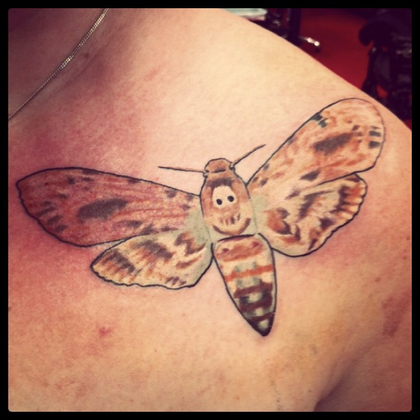 Kat Von D S Blog Silence Of The Lambs Moth By Dennis