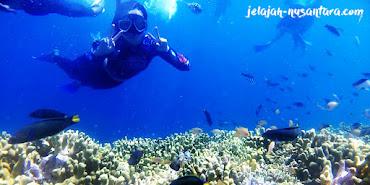 paket wisata open trip murah pulau harapan 2 hari 1 malam