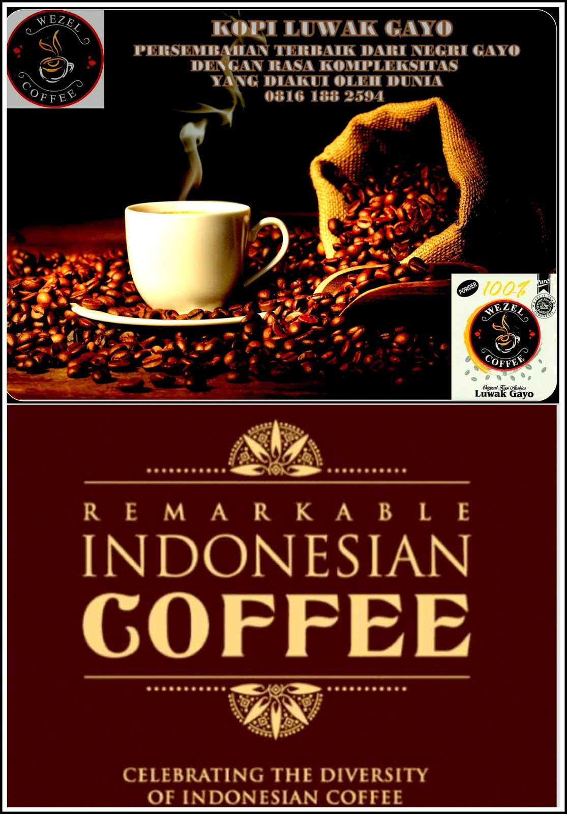 Coffee Luwak Wild Civet Origin Kopi From Indonesia Robusta Premium Gayo Land The Best Arabica Mountain Indonsian