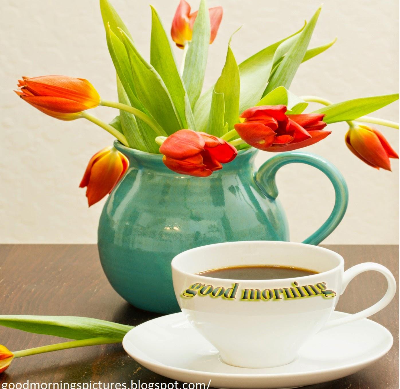 Top 20 good morning beautiful pictures free download beautiful beautiful good morning cup pictures izmirmasajfo