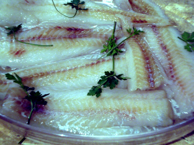 fish fillets cooked in microwave oven