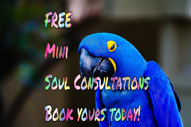 FREE SOUL CONSULTATION - Tell Me How May I Serve You?