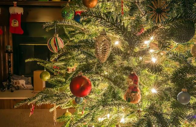 La Navidad y sus peligros...