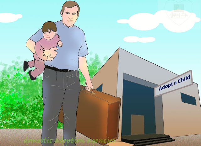 How to Get Yourself Prepared for Adopting a Baby in California through Domestic Adoption Agencies?