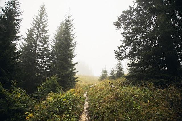 Ruhpolding  - Hörndlwand  Wandern Bayerische Alpen  Wanderung-Ruhpolding  Bergtour-Bayern  Wandern-im-Chiemgau 03