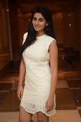 Actress Shamili new glam pics-thumbnail-18