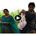 Lamb Testicles Spicy curry Recipe Beautiful girls cooked Sheep Testicles Spiced Stew cooking in  Village,