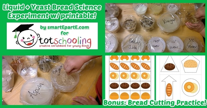 bread science experiment free printable bread cutting pack totschooling toddler and. Black Bedroom Furniture Sets. Home Design Ideas