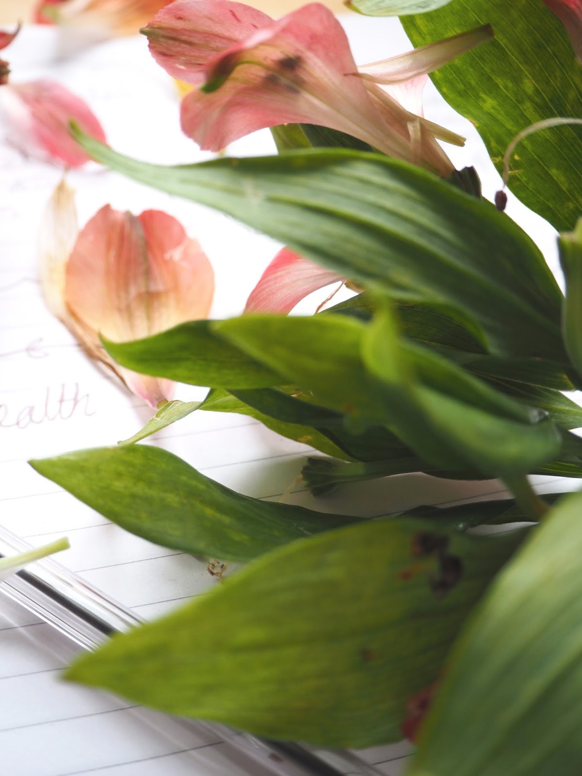 5 things that help me with my mental health   Mental health tips for a better day   Love, Maisie   www.lovemaisie.com