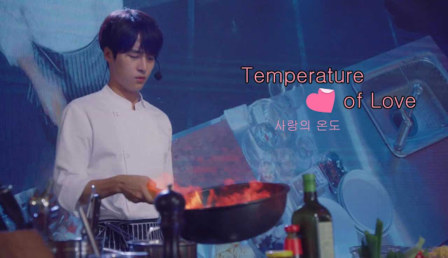Sinopsis Temperature of Love Episode 1-40 (Lengkap)