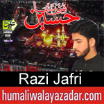 https://www.humaliwalyazadar.com/2018/09/razi-jafri-nohay-2019.html