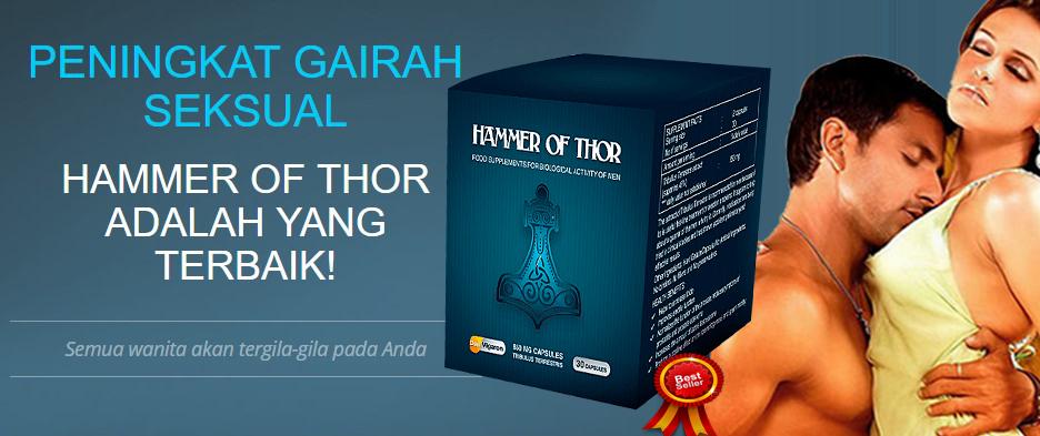 obat hammer of thor pembesar alat vital di apotik sidoarjo