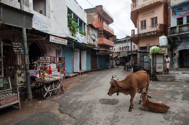 Calles de Pushkar