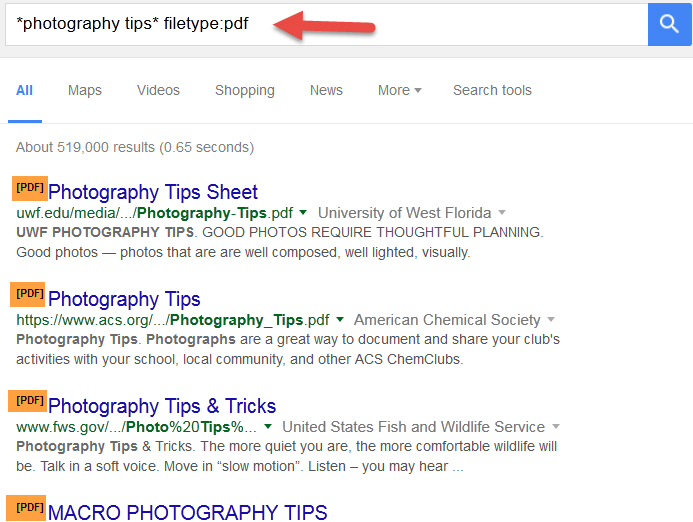 Search google for a specific file type