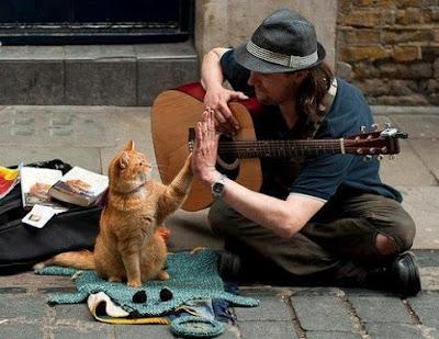 Tác dụng không ngờ khi học đàn guitar