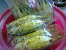 Tips simpan ikan tahan lama dalam peti sejuk
