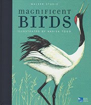 Magnificent Birds