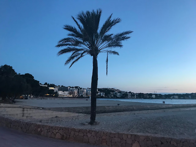 Santa Ponsa beach in the evening with the sunset