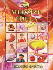 https://archive.org/download/admin_20160117/MudzizeTijela.pdf