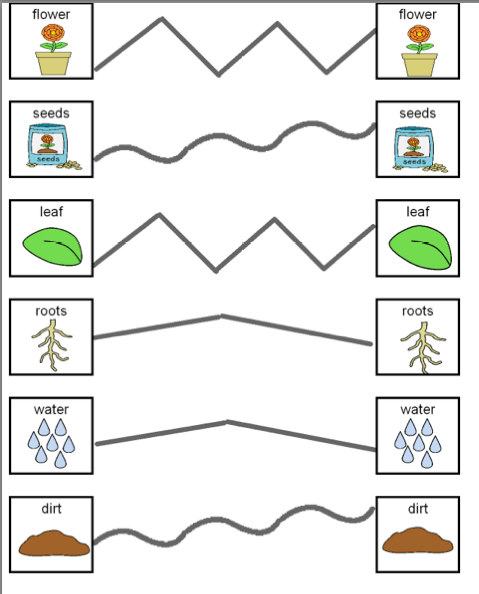 Printables Worksheets For Children With Autism autism tank science unit plants also here are some pictures of the other hands on items we use to supplement worksheets students usually get these when they finish their