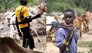 Herdsmen killings: What must happen for peace to reign – Fulani leader