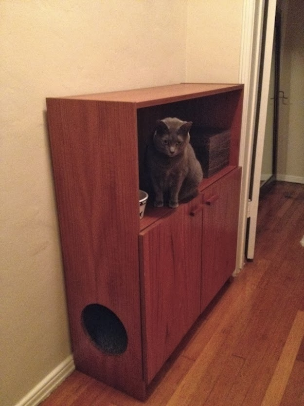 Thoughts of Purpose: More DIY Solutions for Cat Litter Boxes!