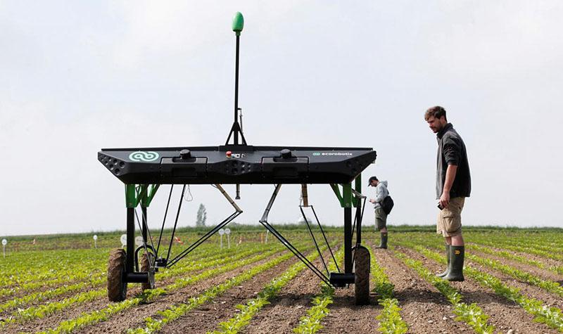 Швейцарский сельскохозяйственный робот ecoRobotix