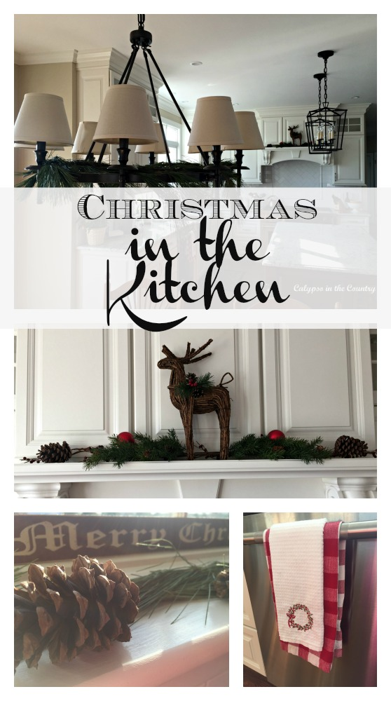 Simple decorating ideas for Christmas in the Kitchen