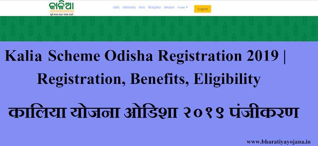 Kalia Scheme Odisha,Kalia Scheme Odisha Registration,Kalia Scheme Odisha 2019, odisha government,sarkari yojana,bharatiya yojana