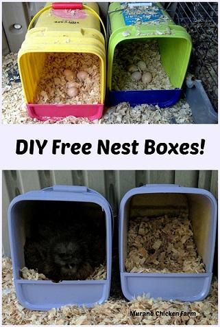 Free Next Boxes