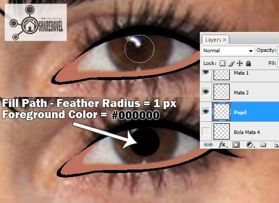 membuat vector pupil mata menggunakan photoshop - tutorial membuat vector di photoshop - membuat foto menjadi kartun dengan photoshop